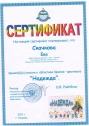 klimova_diplom_12