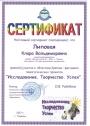 moi_dostijeniy-6