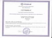 sidorenko_n_v_diplom_1