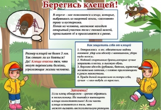 beregis_kleshey_0